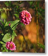Vintage Flower Metal Print by Rhonda Humphreys