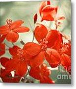 Vintage Red Flowers Metal Print