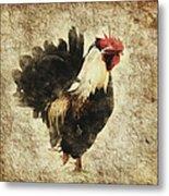 Vintage Rooster Metal Print