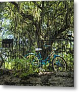 Vintage Schwinn And Ancient Live Oak Metal Print