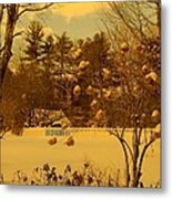 Vintage Snow Blossoms Metal Print