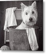 Vintage Wash Day Metal Print