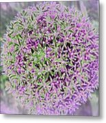 Violet And Green Metal Print