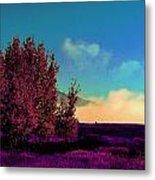 Violet Flats Metal Print