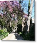 Violet Tree Alley Metal Print