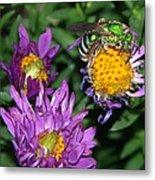 Virescent Metallic Green Bee Metal Print