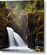 Virgin Creek Falls Metal Print by Chris Heitstuman
