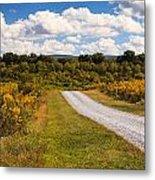 Yesterday - Virginia Country Road Metal Print