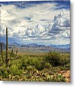 Visions Of Arizona  Metal Print by Saija  Lehtonen