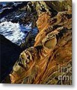Visions Of Nature 5 Metal Print