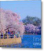 Visitors To The Blooms On The Basin Metal Print