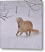 Viva Zapata Contratercero Dances In The Snow Metal Print