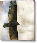 Vulture In Color Metal Print