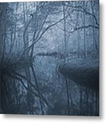 Waccasassa River Metal Print