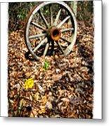Wagon Wheel Daffodil Metal Print