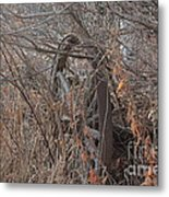 Wagon Wheel_7449 Metal Print