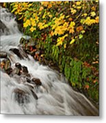 Wahkeena Falls At Columbia River Gorge In The Fall Metal Print