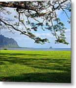 Waiahole Oahu Hawaii Metal Print