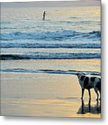 Wait For You Metal Print