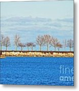 Waiting For Summer - Trees At The Edge Metal Print by Mary Machare