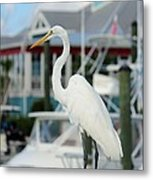 Waiting For The Boat Metal Print