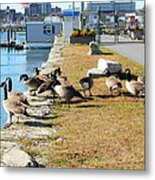 Waiting For The Ferry Metal Print