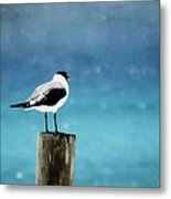 Waiting For The Fishing Boats Metal Print