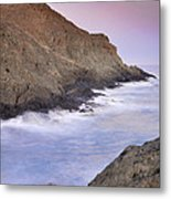 Waiting For The Moon Metal Print
