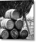 Waiting For Wine Season Metal Print