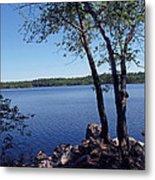 Walden Pond Saugus Ma Metal Print by Barbara McDevitt