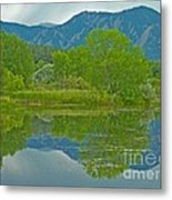 Walden Pond Spring Reflections Metal Print by George Tuffy