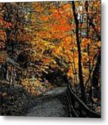 Walk In Golden Fall Metal Print