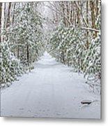 Walk In Snowy Woods Metal Print