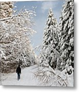 Walk In The Winterly Forest With Lots Of Snow Metal Print