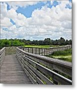 Walk On Wetlands Metal Print