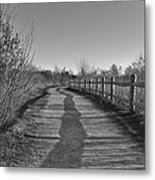 Walk This Way... Metal Print