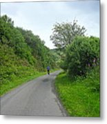 Walking A Lonely Road Metal Print