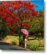 Walking Along The Road. Mauritius Metal Print