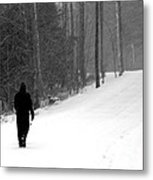Walking In A Winter Wonderland Metal Print