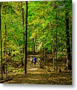 Walking In The Forest Metal Print