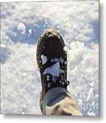 Walking In The Snow Metal Print