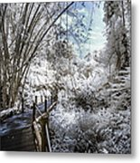 Walking Into The Infrared Jungle 2 Metal Print