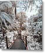 Walking Into The Infrared Jungle 3 Metal Print