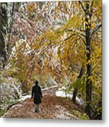 Walking Into Winter - Beautiful Autumnal Trees And The First Snow Of The Year Metal Print by Matthias Hauser