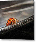 Walking On Edge Metal Print