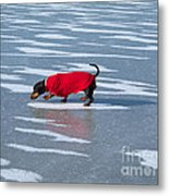 Walking On Water Metal Print