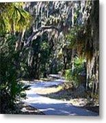 Walking Path Metal Print