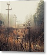 Walking The Lines Metal Print