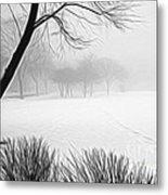 Walking Through A Winter Wonderland Metal Print