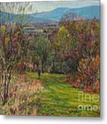 Walking Through The Woods In Spring Metal Print